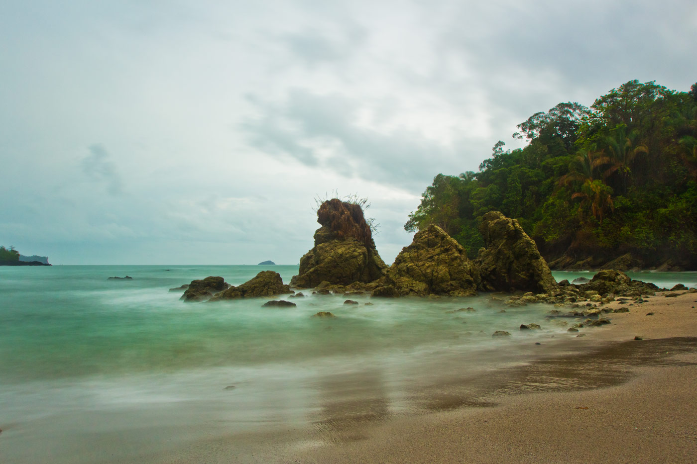 Nick-Zantop-Photography-Rainforest-4